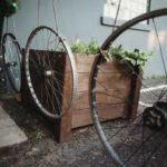 diy plant life in courtyard